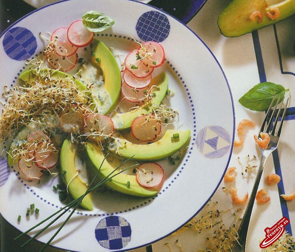 Авокадо с проросшей люцерной