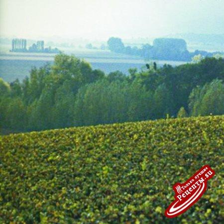 Франция. Производство шампанского