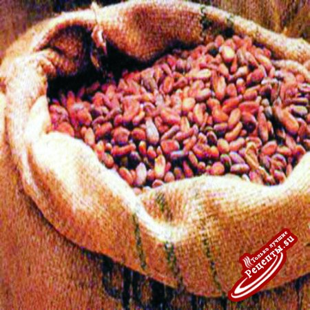 Путешествие шоколада по миру. Какао бобы