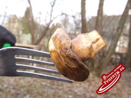 для дачи - курица + шампиньоны - все маринованное