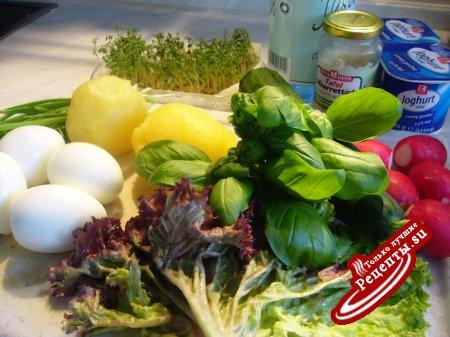 Окрошка – весенне-летний холодный суп